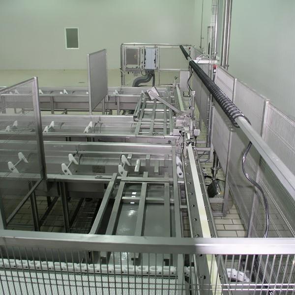 Automatic feta line