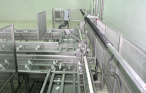 PROCESSING & PRODUCTION LINES